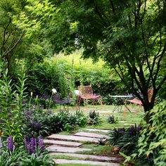 The NGV Women's Association Garden Day is this Thursday 16 October. Seven beautiful gardens in the Toorak area will be open for viewing including this E-GA garden! Tickets can be purchased on the day from 14 Maple Grove, Toorak. For more information visit www.ngv.vic.gov.au