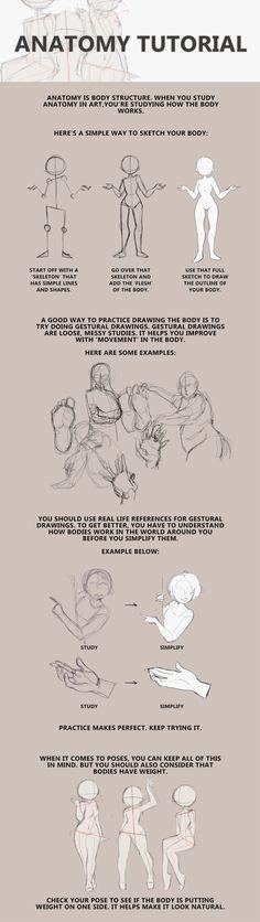 Anatomy Guide by Bunsiebox