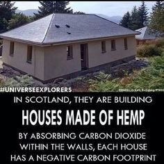 In Scotland, they are building houses made of hemp. By absorbing carbon dioxide within the walls, each house has a negative carbon footprint. << THIS IS THE BEST THING EVER! Medical Marijuana, Cannabis, Marijuana Facts, Green Building, Building A House, Building Ideas, Natural Building, Save Our Earth, House Made