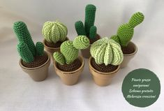 It had been a long time since my mother asked me to crochet some succulents and the last summer I finally satisfied her .My idea was to create a set of 3 succulents as close to real as possible. Crochet Cactus Free Pattern, Modern Crochet Patterns, Crochet Poncho Patterns, Crochet Patterns Amigurumi, Crochet Ball, Crochet Home, Love Crochet, Crochet Flowers, Catus
