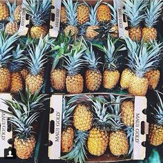 pineapple overload