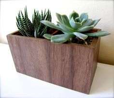 "Plant Holder, Succulent Holder, Desk Planter, made from WALNUT wood, MEDIUM rectangular shape (roughly 5"" x 3""), plants NOT included"