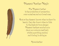 New Version of Pheasant Feather Magic *Please check your local and federal guidelines for feather collection and possession! Feather Symbolism, Feather Meaning, Animal Symbolism, Feather Art, Animal Spirit Guides, Your Spirit Animal, Phesant Feathers, Smudging Prayer, Magic Bottles