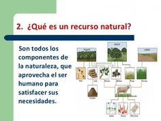 recursoagotamiento-de-los-recursos-naturales-4-728.jpg (700×525)