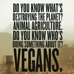 A plant-based diet helps reduce water shortages, toxic waste, land degradation, pollution, species extinction and world hunger go vegan and eat a plant based diet Quotes Vegan, Vegan Memes, Vegetarian Quotes, Reasons To Be Vegan, Vegan Facts, Animal Agriculture, Why Vegan, Vegan Animals, Think