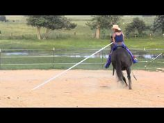 Garrocha with your horse
