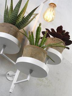 Combo Design is officieel dealer van It's About RoMi ✓Florence plant holder/hanglamp makkelijk te bestellen ✓ Verschillende kleuren beschikbaar ✓ Gratis verzending (NL) It's About Romi, Wall Lights, Ceiling Lights, Florence, Planter Pots, Home Decor, Products, Design, Appliques