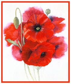 http://www.painters-online.co.uk/userfiles/gallery/poppy%20posy%20red%20border.jpg