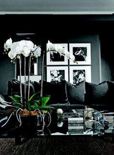 5 ideias de decoração preta! - Fashionismo