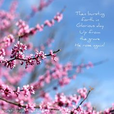 With a Grateful Prayer and a Thankful Heart: Think on These Things # 8 Glorious Day