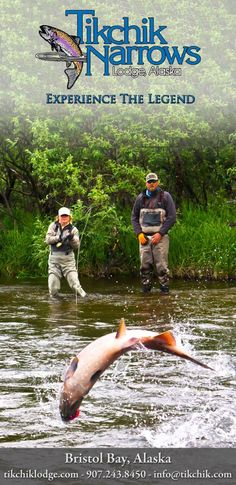 So I try to avoid advertisements, but this one features my good friend Adam Franceschini who has guided for Tikchik every summer for nearly a decade.  You can also fish with him in the Fall, Winter, and Spring on the Housatonic River in Connecticut.
