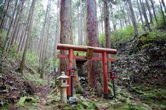 mount-koya-japan