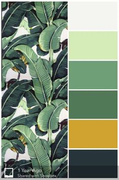 Bath room green yellow girl rooms Ideas for 2019 Color Schemes Colour Palettes, Modern Color Schemes, Green Color Schemes, House Color Schemes, Living Room Color Schemes, Interior Color Schemes, Decorating Color Schemes, Apartment Color Schemes, Cores Art Deco