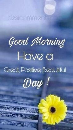 Good Morning Beautiful People, Good Morning Images Flowers, Morning Flowers, Good Morning Good Night, Good Afternoon, Beautiful Day, Good Morning Wishes Gif, Morning Greetings Quotes, Good Morning Messages
