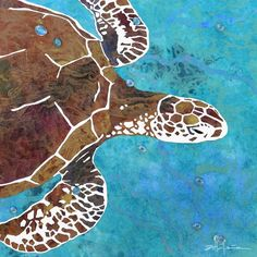 Island turtles photo series by Marcy Ann Villafana at ExhibitionNest.com to see more visit www.Villafanaart.com Photo Series, Turtles, Caribbean, Ann, Island, Artwork, Artist, Photography, Painting