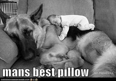 Funny pictures about Just Sharing Some Dog Love. Oh, and cool pics about Just Sharing Some Dog Love. Also, Just Sharing Some Dog Love photos. Love My Dog, Puppy Love, Baby Animals, Funny Animals, Cute Animals, Funny Dogs, Baby Dogs, Dogs And Puppies, Doggies