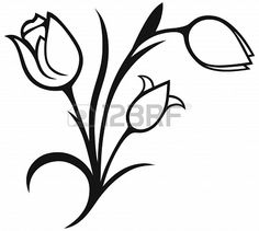 Bouquet of tulips isolated on white background  Silhouette