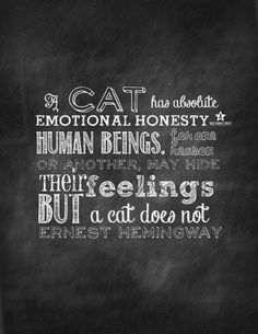 Cats Never Hide There Feelings! ★ Cats Quote Chalkboard Print ★ by ALifeAmericana on @Etsy