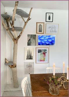Diy Cat Tower, Cat Tree Plans, Cat Wall Furniture, Cat Climber, Cat Tree House, Cat Towers, Wood Cat, Fancy Cats, Cat Condo