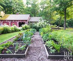 The surest way to increase the yield from a vegetable garden is to reduce the space between plants.