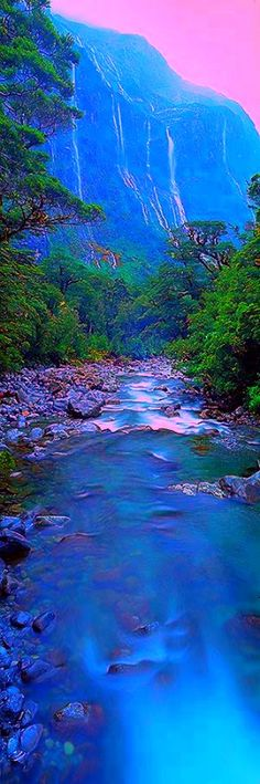 Manapouri, Fiordland National Park, South Island, New Zealand Places Around The World, The Places Youll Go, Places To Go, Around The Worlds, Parc National, National Parks, Terre Nature, Beautiful World, Beautiful Places