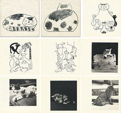Pudlenka love the cover Crazy Cat Lady, Crazy Cats, Neko, Drawings, Cover, Books, Painting, Paper Envelopes, Kitty Cats