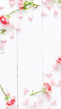 Wallpaper iPhone ⚪️