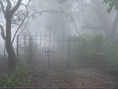 Victorian style bungalow gate- a haunted trail: http://aceguide.blogspot.in