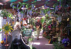A Very Narrow and Colorful Garden Shop in Los Gatos, California | Flickr - Photo Sharing!