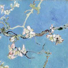 """showslow: """" """" Almond Blossom (detail) ~ Vincent van Gogh """" """""""