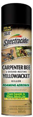 Spectracide Carpenter Bee & Ground-Nesting Yellowjacket Killer Foaming Aerosol (HG-53371)