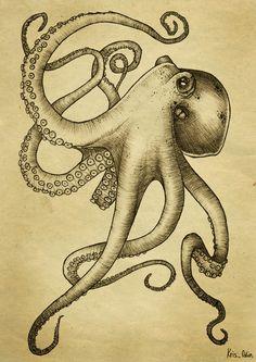 steampunk octopus - Google Search