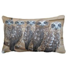 ==>Discount          	Southern Boobook Cross Eyed Owls Pillows           	Southern Boobook Cross Eyed Owls Pillows Yes I can say you are on right site we just collected best shopping store that haveDeals          	Southern Boobook Cross Eyed Owls Pillows today easy to Shops & Purchase Online -...Cleck Hot Deals >>> http://www.zazzle.com/southern_boobook_cross_eyed_owls_pillows-189058710142868132?rf=238627982471231924&zbar=1&tc=terrest