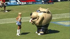 Here's Why You Don't Pick Fights With Mascots