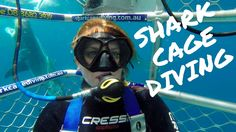 First Clip from my Shark Cage Dive With Calypso Star Charters. Was so amazing to see these amazing Great White Sharks up close. #leoniestravels For All detai...