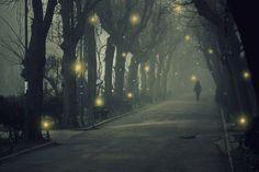 fireflies will light the way..