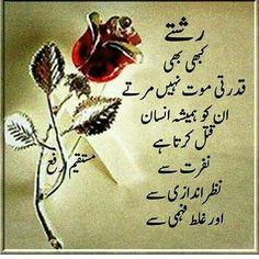 Totally True ____ !!!! _____ !!!! A.H