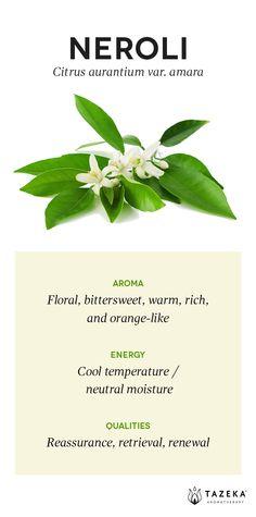 Neroli Profile | (Source: Aromatherapy For the Healing Spirit - Gabrial Mojay) http://www.tazekaaromatherapy.com/