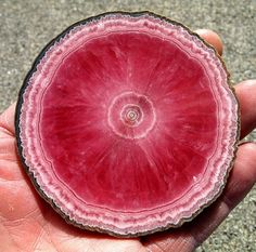 stunning Rhodochrosite slice spectacular color and formation, wow !