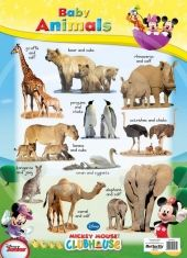 Baby Animals Baby Animals, Charts, Butterfly, Disney, Wall, Products, Graphics, Baby Pets, Bowties