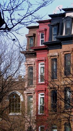 Houses in Clinton Hill, photography Brooklyn.