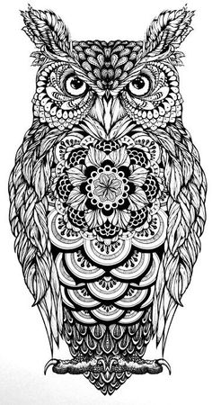 ... tattoo eule tatoos owl zentangle ausmalbilder owls eule tattoo mehr