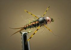 Fly Fish Food -- Fly Tying and Fly Fishing : Fly Tying
