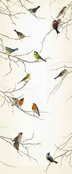 Interior Place - Light Taupe Birds Wall Mural, $52.00