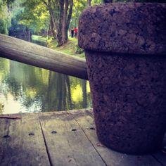 Stool by varas verdes.