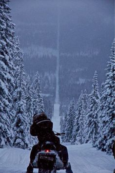 The border of Norway and Sweden... Also it just reminds me of that huge incline in the Polar Express!!