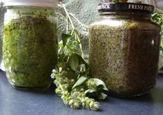 The pesto I plan to make with my home grown basil and Dad's organic garlic!
