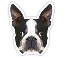 Crystalline Boston Terrier Sticker