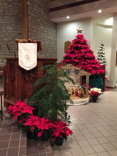 st joan of arc catholic church powell oh christmas decorations 2014 - Christmas Decorating Ideas For Church Sanctuary
