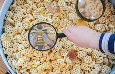 Kids will love exploring the bee life cycle with this fun (edible) sensory bin!